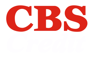Business Credit & Financial Information Company